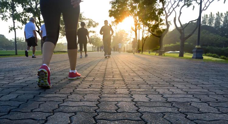 Camminata della Salute di Budrio • 3° Edizione