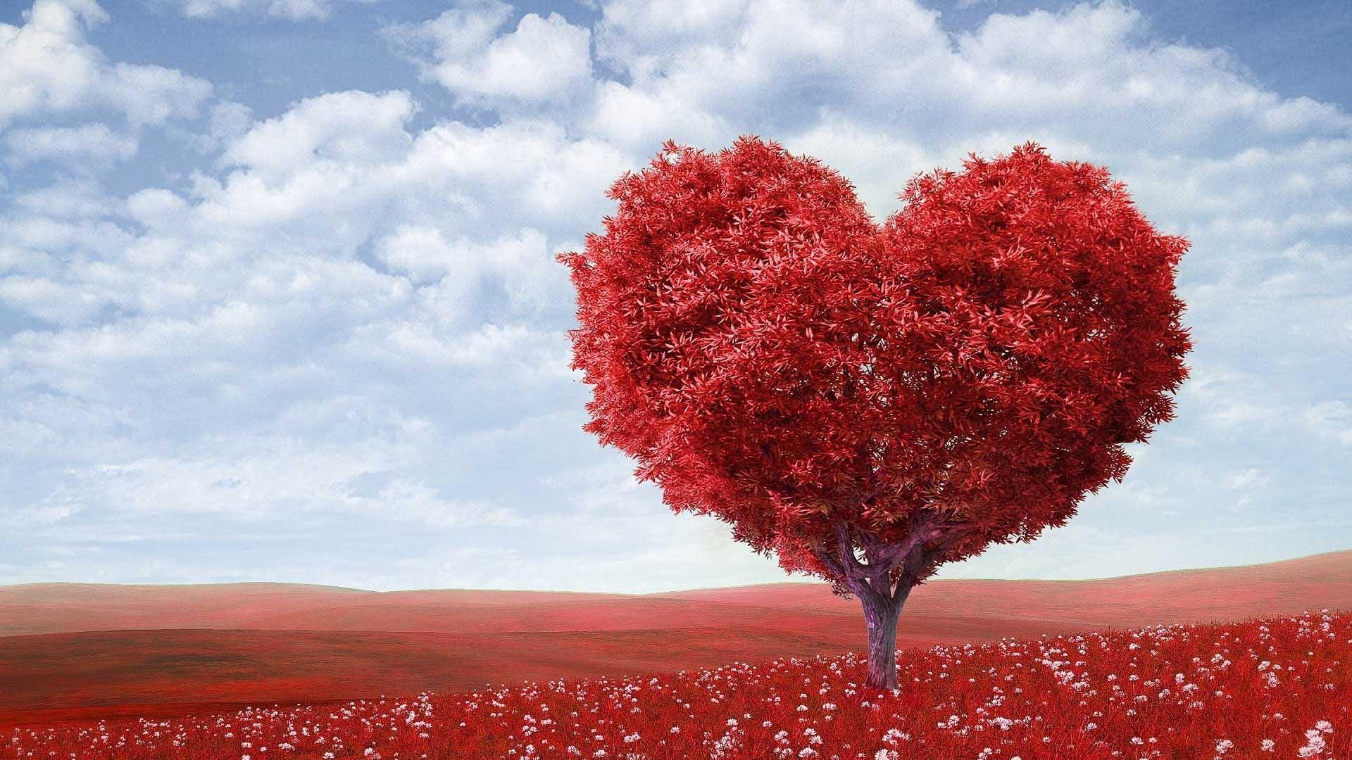 Screening gratuito sul rischio cardiovascolare